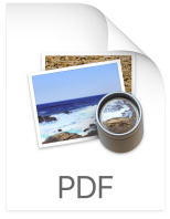 pdf_icn